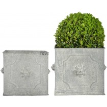 Esschert Design AM Pot de fleurs carrés lion set/2 | Trends & Vision